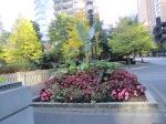 Vancouver Garden 15