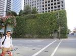Vancouver Garden 10