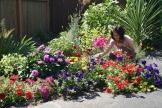 Beacon Hill Garden 8-13-1